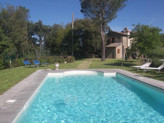 jardin-piscine-2-4-2.jpg